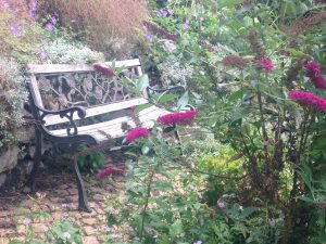 A peaceful outdoor therapy seat